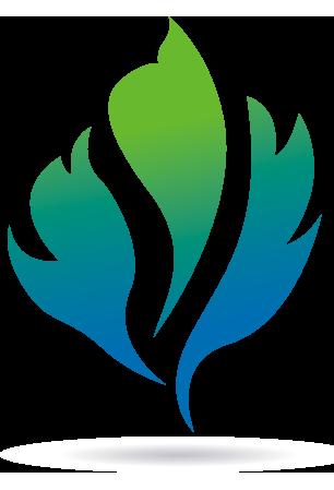 DGSC logo